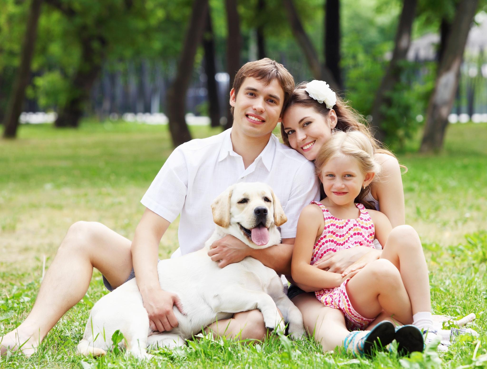 Картинки счастливой семьи животных