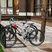 Прокат велосипедов «Парк-отель «Европа»