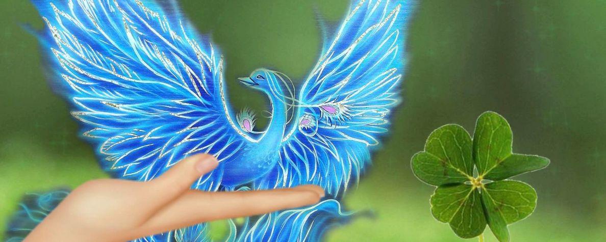 Картинки по Ðапросу синяя птица