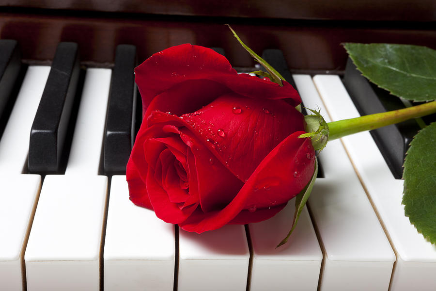 Приколы джоконда, музыкальные открытки о любви на ютубе
