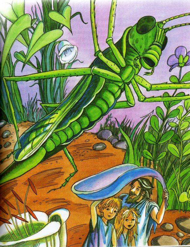 Картинки книги приключения карика и вали