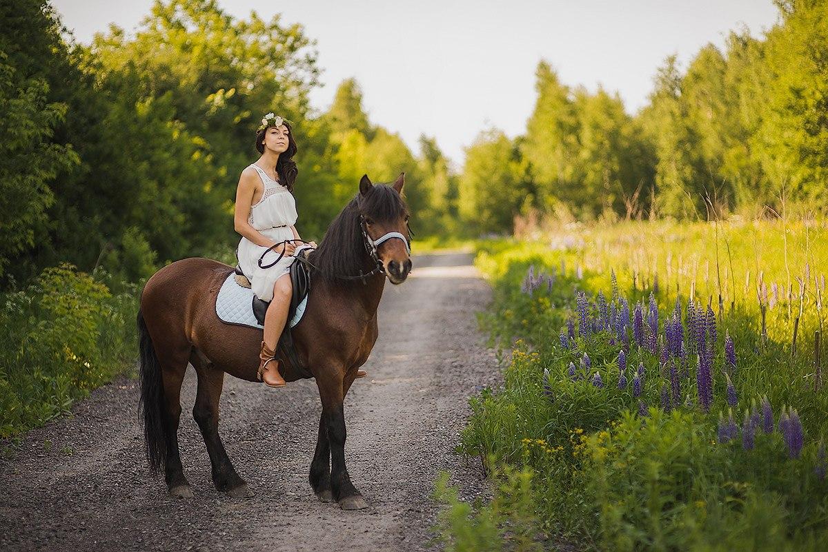 Картинки катания на лошадях
