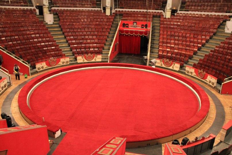 фото цирка арена