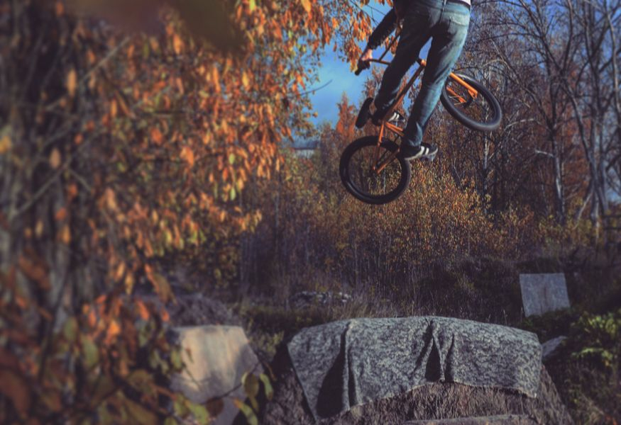 Фото №1 — Dirt Jam Ghetto
