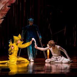 Шоу Cirque du Soleil