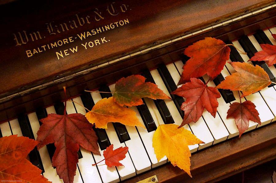 Картинки музыка и осень, картинки