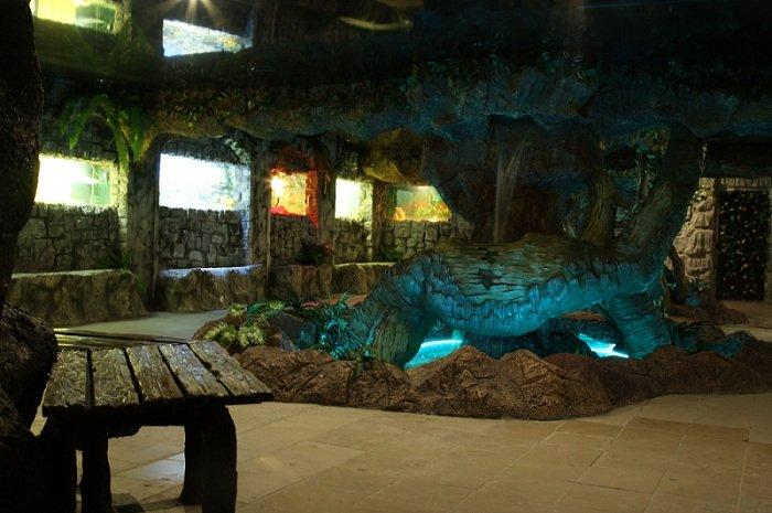 океанариум аквагалерея екатеринбург официальный сайт