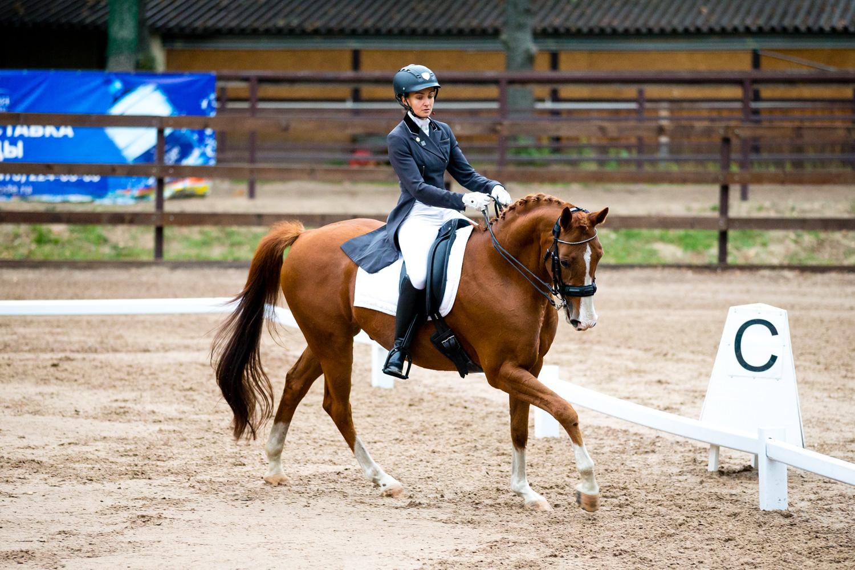 территории бен майер конный спорт фото проводилась целью