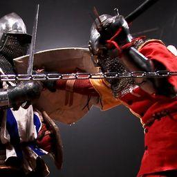 WMFC. Профессиональные средневековые бои