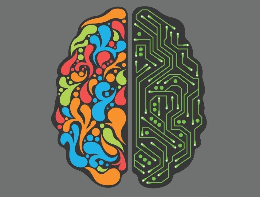 правый мозг левый мозг картинки ворона, фото