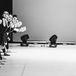 Концерт «Всемирный день танца»