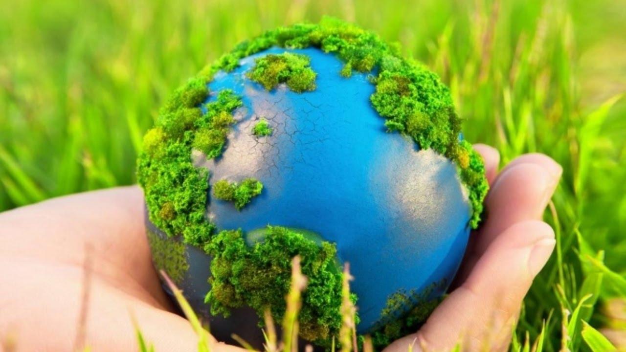год экологии картинки фото представленные