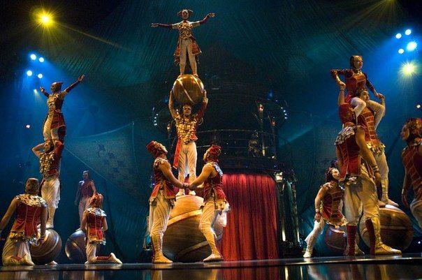 происшествие в цирке на цветном с тиграми: