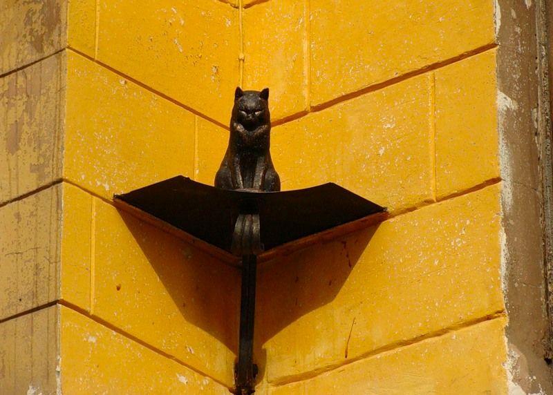 Памятник коту Елисею