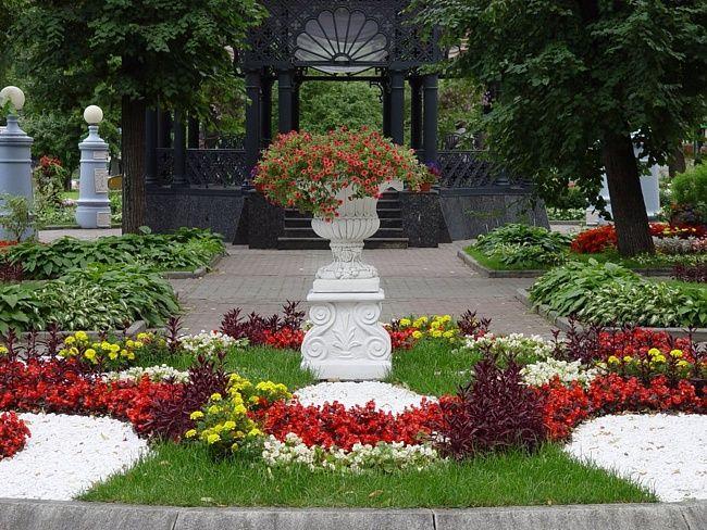 Сад эрмитаж цветок