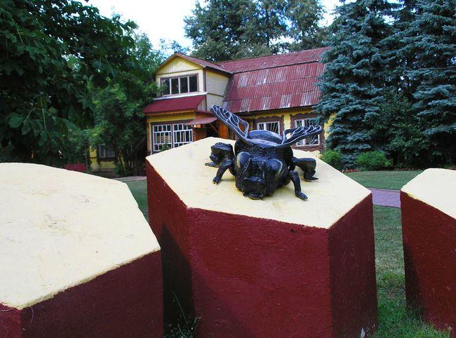 Музей меда