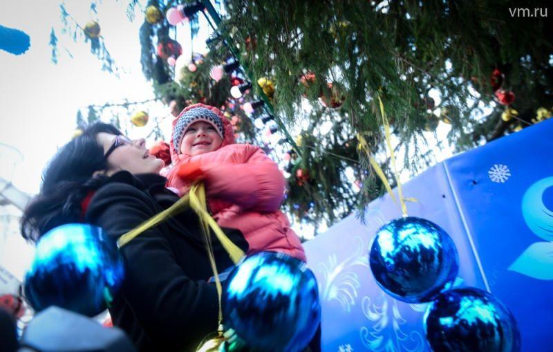 Главную елку страны установили на Соборной площади. Фото vm.ru